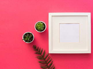 Minimal mockup frame with succulent plants on pink background. Styled still life