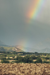 Rainbow in the mountains at summer