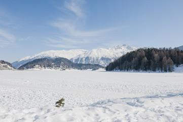 St. Moritz, St. Moritzersee, Engadin, Oberengadin, Stazerwald, Winter, Wintersport, Winterwanderweg, Muottas Muragl, Schafberg, Alpen, Graubünden, Schweiz