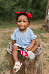 Adorable little toddler girl sitting on a tree stump, wearing a cute dress and holding an American Flag.