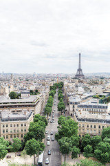 View of city of Paris and Eiffel Tower