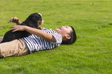 One little asian boy playing with his Bernese Mountain Dog outdoor in the lawn at sunny summer afternoon