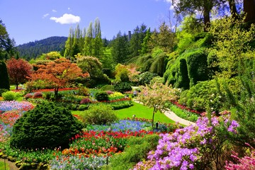 Photo sur Plexiglas Jardin Butchart Gardens, Victoria, Canada. View of the colorful flowers of the sunken garden during spring.
