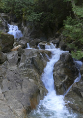 Small Waterfall Cascade in Rocky Stream as it rushes through the Forest