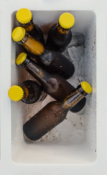 Beer bottles in a beach freezer