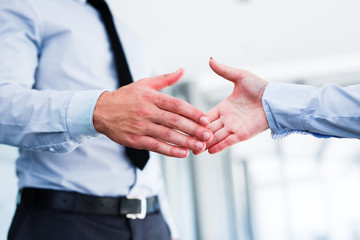 Young colleagues shake hands after a successful job