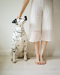 Unrecognizable woman stroking dog