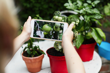 Child taking a photo of plants