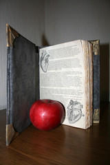 Old-looking handmade book with an apple