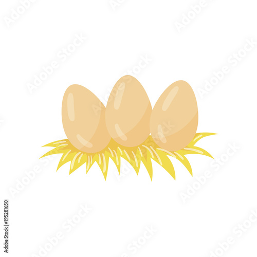 Three chicken eggs lying in hay nest  Organic farm product