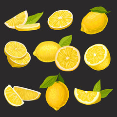 Icon collection of sliced and whole lemons. Organic citrus fruit. Natural and healthy eating. Detailed vector elements for candy, tea, juice packaging