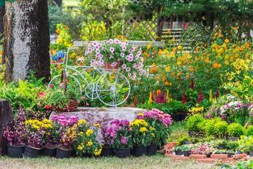 In cozy home garden on summer./ Vintage white bike and flowerpot in cozy home flowers garden on summer.    Wall mural