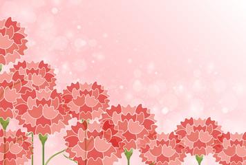 カーネーション 母の日 花 背景