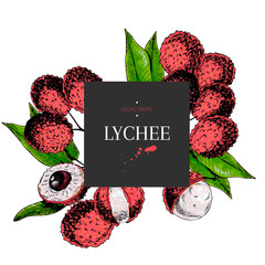 Hand drawn lychee branch, whole berry, half with leaves in design template. Colored engraved illustration. Square stylish frame composition. Restaurant menu, flyer, banner, exotic fruit summer party