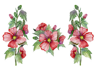 Red malva flowers on a stem with green leaves and buds. Set of illustrations. Fresh mallows isolated on white background.  Watercolor painting.