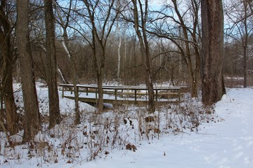The winter scene with the wood bridge in forest.