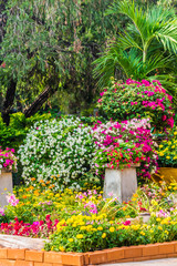 Cozy home garden on summer./ Cozy home flower garden and flower pot on summer.
