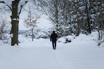 Man on a footpath in a snowy forest