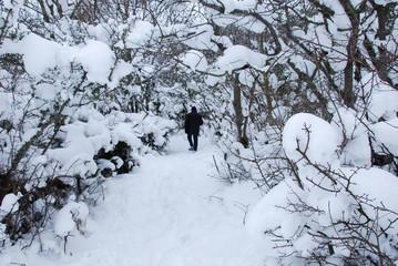 Walking on a snowy footpath