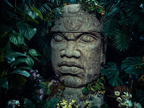 Olmec sculpture carved from stone. Big stone head statue in a jungle