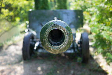 Front of the green cannon