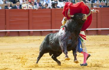 BULLFIGHT IN SEVILLA, SPAIN
