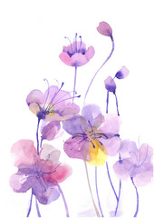 Watercolor flowers. Decorative. watercolor background.