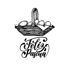 Feliz Pascua translated from Spanish handwritten phrase Happy Easter in vector. Drawing of basket of paschal eggs.