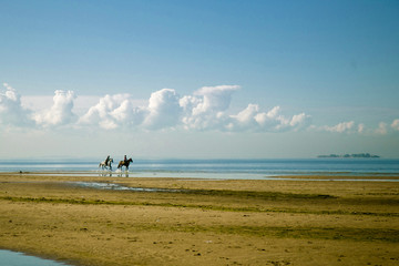 Two riders on horseback ride along the beach on a blue sky background and clouds