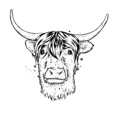 Bull with horns. Vector illustration. Technology and music.