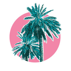 Tropical coconut palm trees.