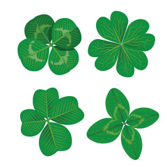 Set of four leaf clovers. Realistic vector illustration. Vector EPS10.