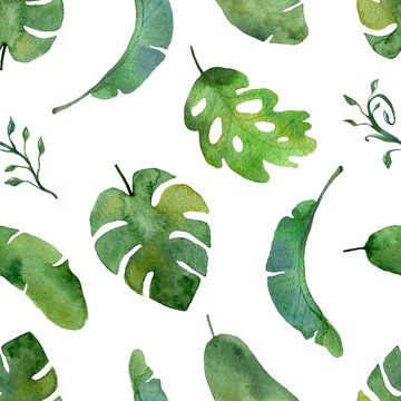 Watercolor green plant pattern on a white background.
