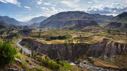 Photo sur Plexiglas Amérique du Sud View of terraced fields and Colca river in Colca Canyon in southern Peru, in Arequipa departement