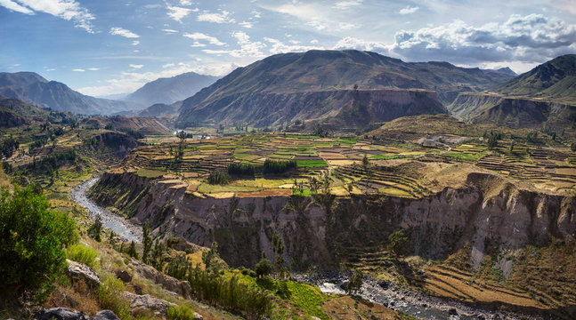 View of terraced fields and Colca river in Colca Canyon in southern Peru, in Arequipa departement