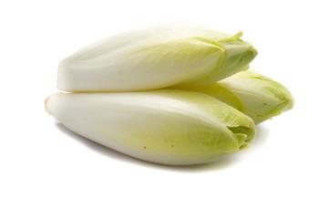 chicoree chicorée isoliert freigestellt auf weißen Hintergrund, Freisteller