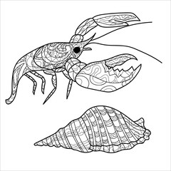 Cancer and shell, illustration for coloring, coloring page
