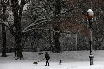 A woman walks dogs in Riverside Park during a snowstorm in upper Manhattan in New York City