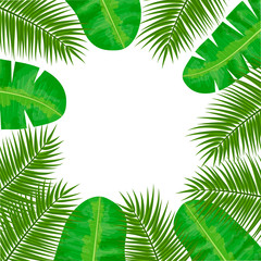 Coconut palm and Banana palm leaves frame. Central place for text. label template. Vector illustration with tropic motif