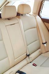 Clean brown back car seat