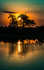 Sunrise over a pond with ducks floating through rippled water