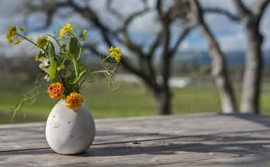 A Wine Vineyard Unfurls in the Distance behind a Vase of Colorful Spring Flowers and several Oak Trees