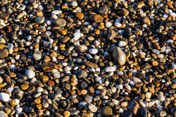 Wet sea pebbles close-up.