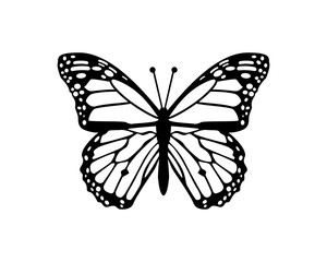 Beautiful Flying Butterfly Sign Symbol Animal Icon Logo Vector