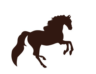 Black silhouette of horse. White background. Icon.