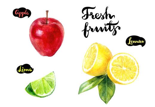apple lemon lime watercolor