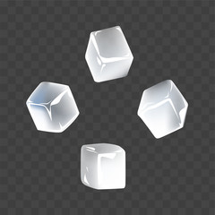 ice cubes realism style vector illustration