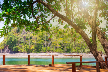 Natural relaxation space under the tree as the terrace nearby the sea at Tarutao national park Satun, Thailand.