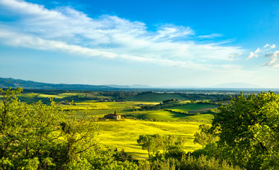 Maremma countryside, sunset landscape. Elba island on horizon. Tuscany, Italy.