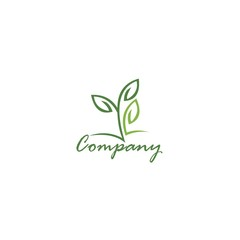 Ecology leaf shape
